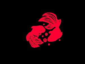 西本屋旅館金魚